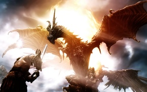 Picture dragon, warrior, Destiny