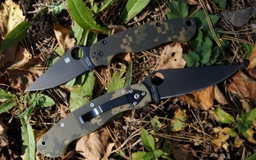Picture SPYDERCO, PARAMILITARY 2, MILITARY
