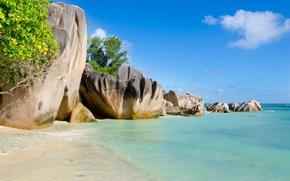 Picture sea, trees, landscape, nature, tropics, rocks, trees, sea, landscape, nature, rocks, tropics