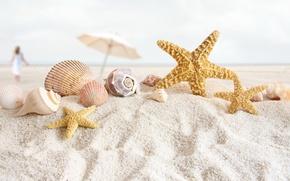 Picture sand, sea, beach, style, umbrella, shore, shell, starfish, Wallpaper from lolita777, beach still life