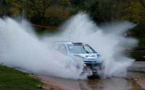Picture grass, trees, squirt, rally, rally, wrc, hyundai, Ford, i20, 2014