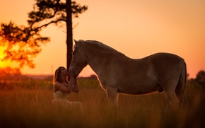 Picture girl, sunset, horse