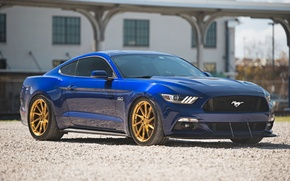 Picture mustang, ford, 5.0, gts