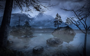 Picture trees, mountains, night, nature, lake, the evening