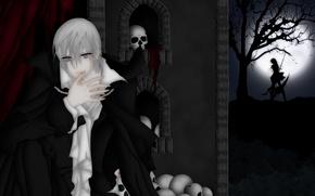 Picture girl, night, guy, Vampire Knight, vampire knight