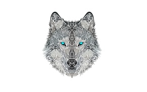 Picture face, style, wolf, dog, head, wolf