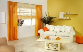 Picture orange, design, style, sofa, furniture, interior