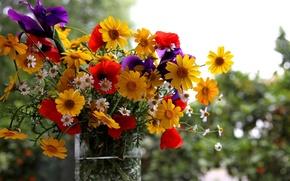 Picture summer, flowers, bouquet, vase