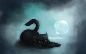 Picture cat, art, black, bubble, lying, VanillaKeyblade