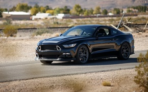 Picture Mustang, Ford, Mustang, Ford, RTR, 2015, Spec 2