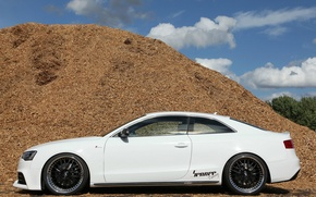 Picture Audi, Audi, tuning, profile, white, 2012, Germany, Coupe, Turbo, Luxury, Tuner, Senner, Sports car, V-6