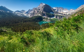 Picture forest, grass, trees, mountains, lake, rocks, USA, the view from the top, Glacier National Park, …