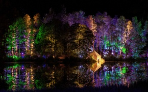Picture forest, trees, night, lights, Park, house