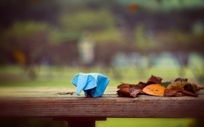 Picture leaves, paper, elephant, origami, leaves, bokeh, bokeh, 2560x1600, paper, elephant, origami