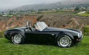 Picture Roadster, Shelby, Cobra, 1966, 427