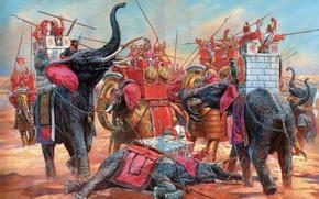Picture figure, armor, battle, elephants, combat, arrows armed with javelins, wide curb caps, bronze nalobnik, armor …