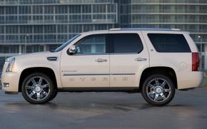 Picture Cadillac, SUV, Escalade, Hybrid