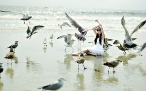 Picture girl, birds, the situation