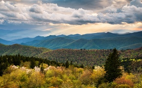 Picture the sky, clouds, hills, spring, forest, North Carolina
