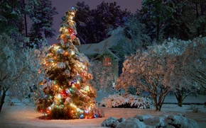 Wallpaper winter, snow, trees, night, house, holiday, spruce, tree, garland