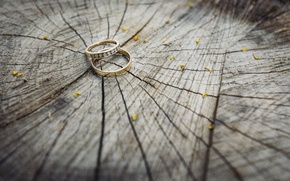 Picture tree, ring, two