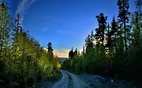 Picture road, forest, Ural