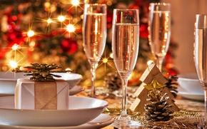 Picture holiday, gift, tree, glasses, champagne, herringbone, bump, Christmas lights, Shine
