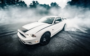 Picture road, car, forest, white, asphalt, speed, mustang, sports car, sportcar, ford, rtr