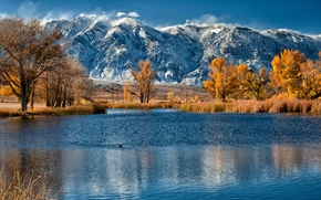 Picture autumn, trees, mountains, lake, reed