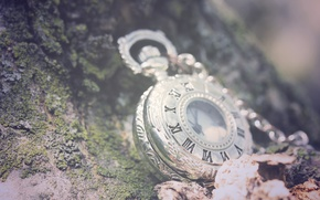 Picture greens, leaves, macro, stones, background, watch, chain, Roman numerals