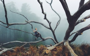 Picture girl, forest, fog, branches