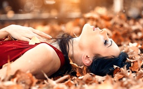 Picture leaves, girl, Alessandro Di Cicco, Sweet autumns dream