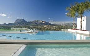Picture palm trees, view, pool, the city, landscape