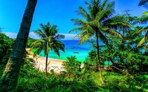 Picture Thailand, Phuket, Krabi, Similan Islands