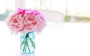Picture white, flowers, table, background, chair, Bank, vase, pink, blue, peonies, jar