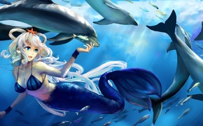 Picture girl, fish, the ocean, star, mermaid, bear, art, dolphins, vocaloid, under water, Vocaloid, luo tianyi, …