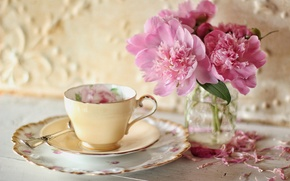Picture flowers, petals, Cup, saucer, peonies