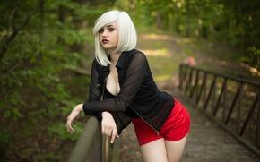 Picture girl, bridge, Park, model, shorts, blonde, red, girl, model