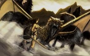 Picture girl, snow, mountains, dragon, sword, shield, Skyrim, Dovahkiin