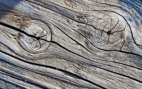 Wallpaper tree, texture, background