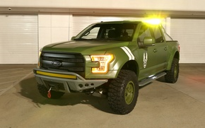 Picture Green, Special Edition, Ford F-150, Halo Sandcat