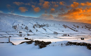 Picture winter, field, the sky, clouds, snow, trees, sunset, hills, England, glow