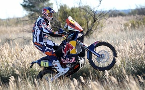 Picture Sport, Race, Motorcycle, Racer, Moto, Red Bull, Rally, Dakar, Side view
