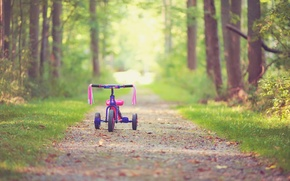 Picture leaves, trees, bike, childhood, background, tree, pink, widescreen, Wallpaper, mood, children, wallpaper, leaves, bicycle, path, …
