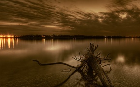 Picture lights, river, root, the evening