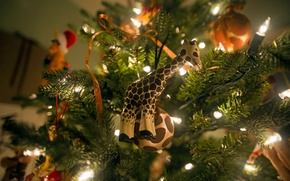 Picture lights, garland, tree, holiday, new year, mood, toys