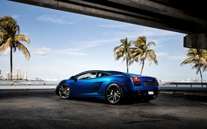 Picture the sky, blue, palm trees, Lamborghini, Gallardo, skyscrapers, Lamborghini, blue, Lamborghini, the rear part, Gallardo