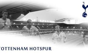 Picture wallpaper, sport, logo, stadium, football, England, Tottenham Hotspur, White Hart Lane, players
