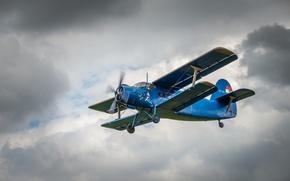 Wallpaper Antonov, the sky, An-2, the plane