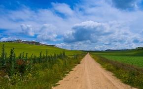 Picture road, grass, flowers, mountains, nature, Spain, Castilla